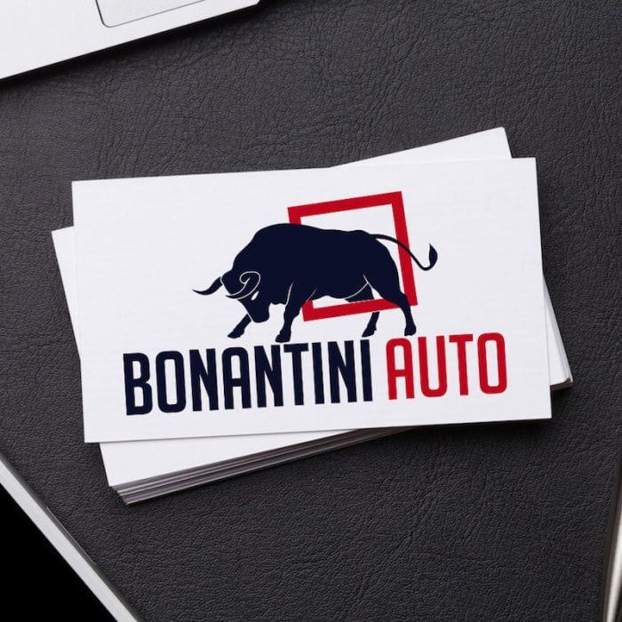 logo bonantini portfolio-3